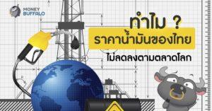 """ทำไม """"ราคาน้ำมัน"""" ของไทย ไม่ลดลงตามตลาดโลก"""