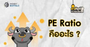 PE คืออะไร