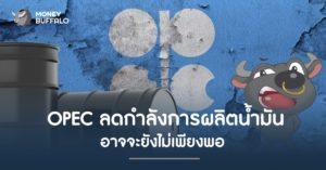"""""""OPEC"""" ลดกำลังการผลิตน้ำมัน อาจจะยังไม่เพียงพอ ?"""