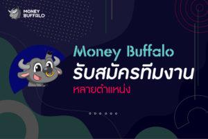 """ปี 2021 Money Buffalo """"รับสมัครงาน"""""""