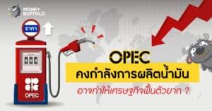 OPEC คงกำลังการผลิต
