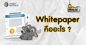 """""""Whitepaper"""" คืออะไร ? - ทำไมนักลงทุนควรอ่านก่อนลงทุน Cryptocurrency"""