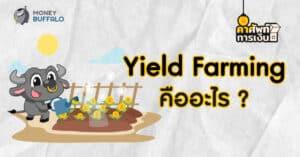 """""""Yield Farming"""" คืออะไร ? - ทำไมถึงเป็นขวัญใจของสายฟาร์ม"""