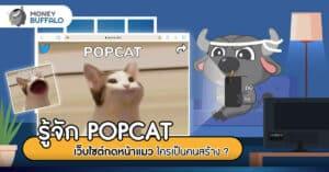 """รู้จัก """"POPCAT"""" เว็บไซต์กดหน้าแมว ใครเป็นคนสร้าง ?"""